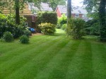 Lawn Care Advice From The Experts