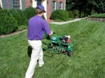 Garden Lawn and Grass Maintenance