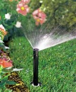 Watering Plants and Garden Irrigation