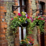 Flower Hanging Basket Liners