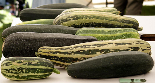 How to Grow Marrows