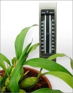 Orchid Care – The Right Temperature