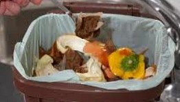 Recycling-and-Home-Composting
