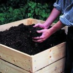 Recycling – How Compost Feeds Your Soil