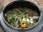 Recycling – What Happens When You Compost?