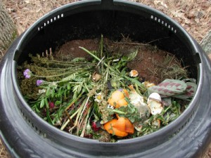 recycling - what happens when you compost