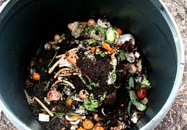 Why Is Composting So Good