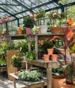 Greenhouse Equipment and Accessories