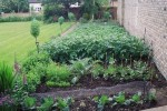 Growing Vegetables and Crop Rotation