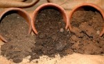 The Different Characteristics of Garden Soils