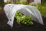 Growing Vegetables in Garden Cloches and Tunnels