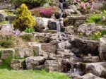Rock Gardens and Tufa Blocks