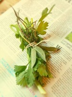 Herb Growing: Bay Leaves