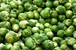 How to Grow Brassicas: Brussels Sprouts