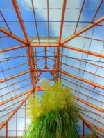 Choosing a Greenhouse: Greenhouse Equipment