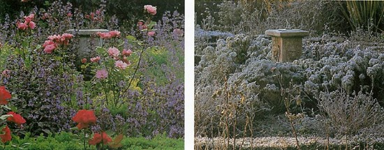 difference between summer and winter in a temperate climate garden