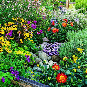Flower Garden Management January To June Your